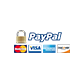 paypal app development india
