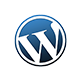 wordpress themes development india